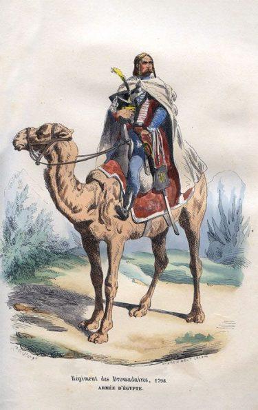 Les dromadaires de Napoléon Bonaparte
